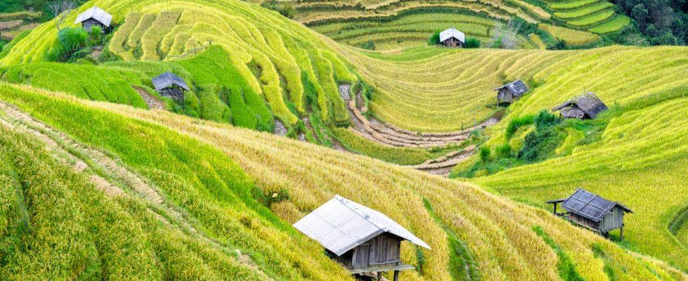 3 lieux incontournables à visiter au cours d'un voyage au Vietnam